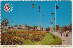 Skyway Over Funway Postcard