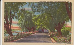 Cedar Point Auto Road